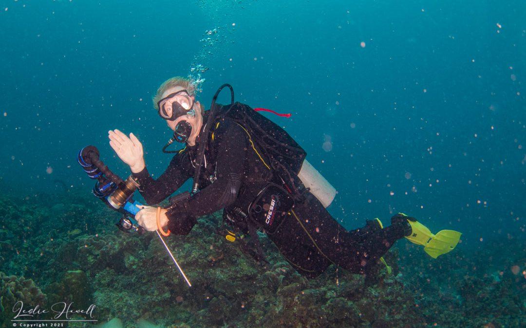 …Exploring the Reefs at Playa Porto Mari