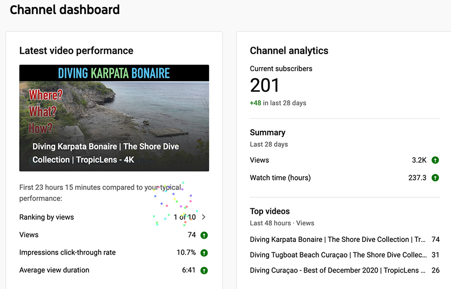 Hundreds of Subscribers! (Oh, and Karpata…)
